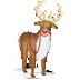 :Rudolph: