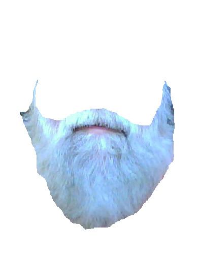 beThe Beard