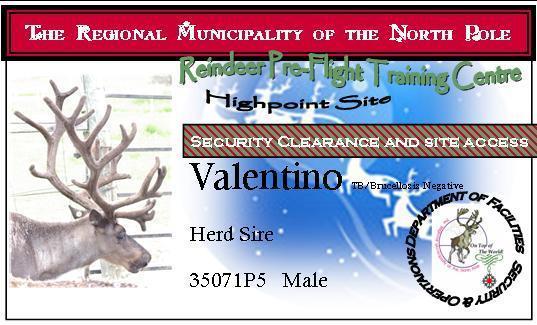 Reindeer ID Cards