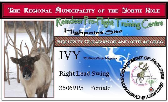 Ivy's ID