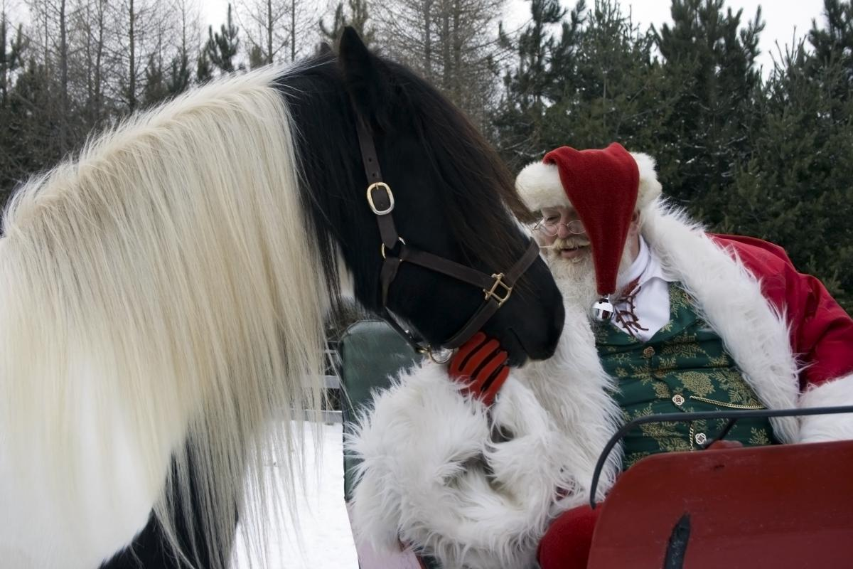 Santa Meets the Gypsy's