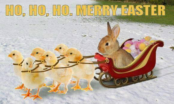Easter Bunny Sleigh