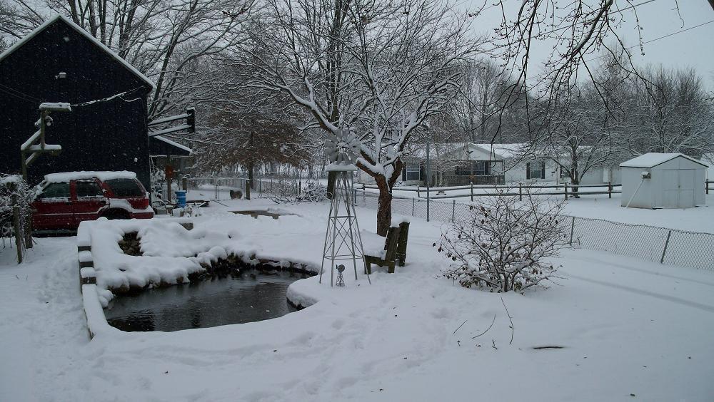 7Santa's pond winter