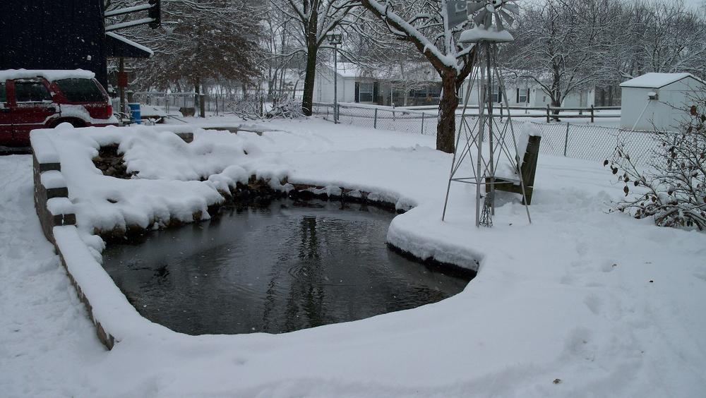8Santa's pond winter