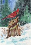 Cardinal WC