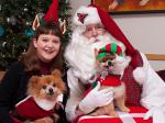 G.  More Christmas Spirit (San Diego Humane Society)