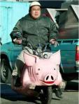 Pig bike Fs