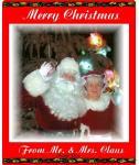 Wishing All a Happy & Safe Holiday Season - Santa Finch