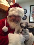 Santa---Pixie.png