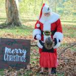 Santa and great granddaughter