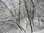 Huntington, VT Snowstorm of 2014