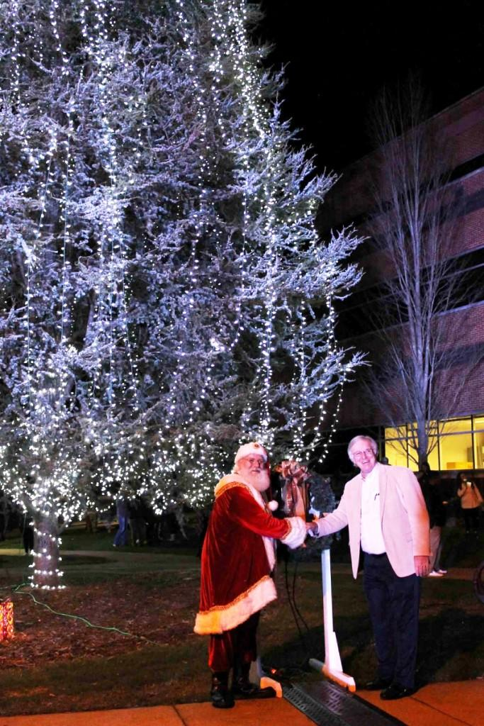 Lander Tree Lighting