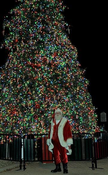 Gov Tree Lighting tree CN