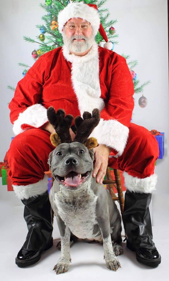 Santa Photo 1.jpg