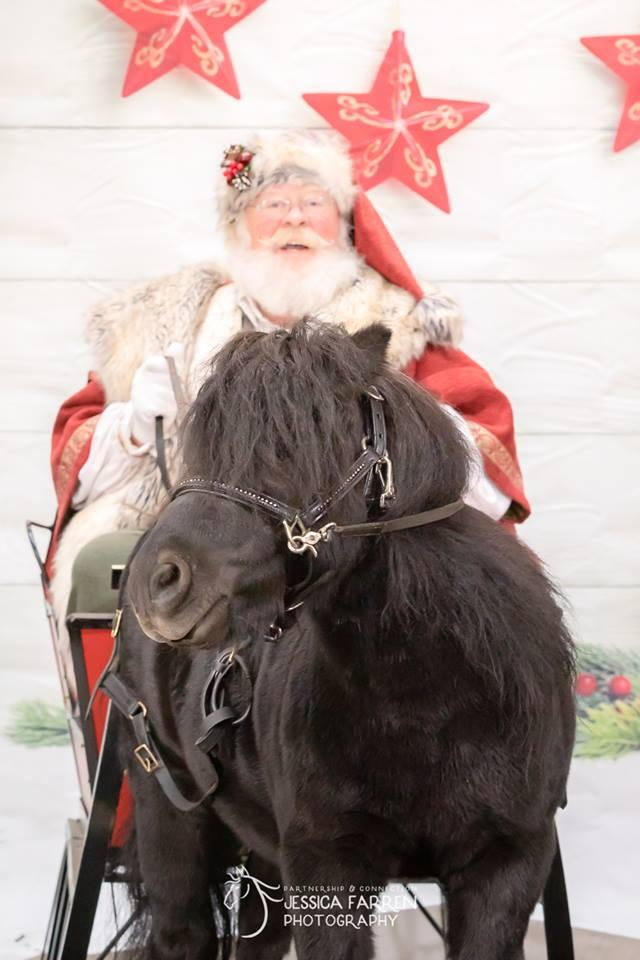 Black Horse Farm 025.jpg