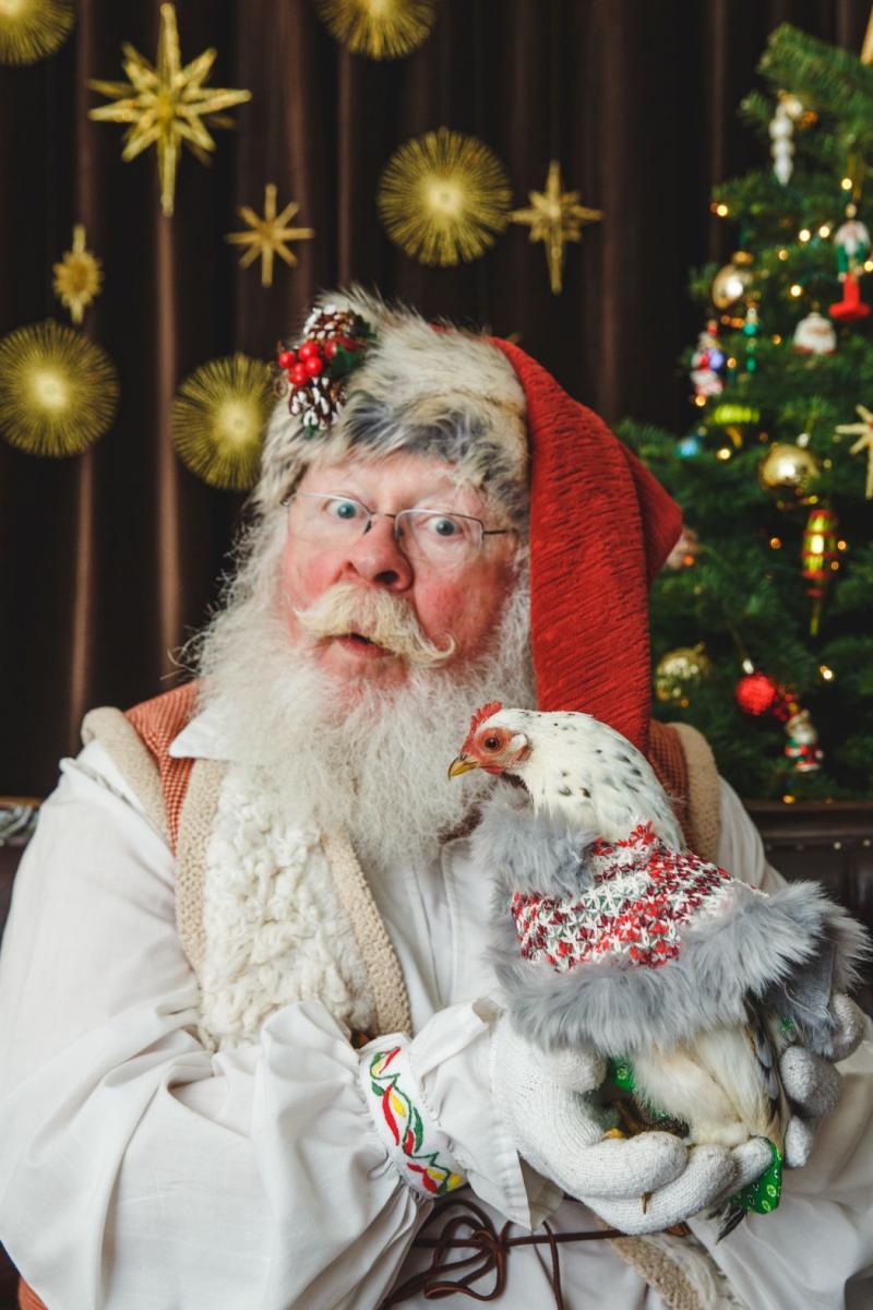 Santa & Chick 015.jpg