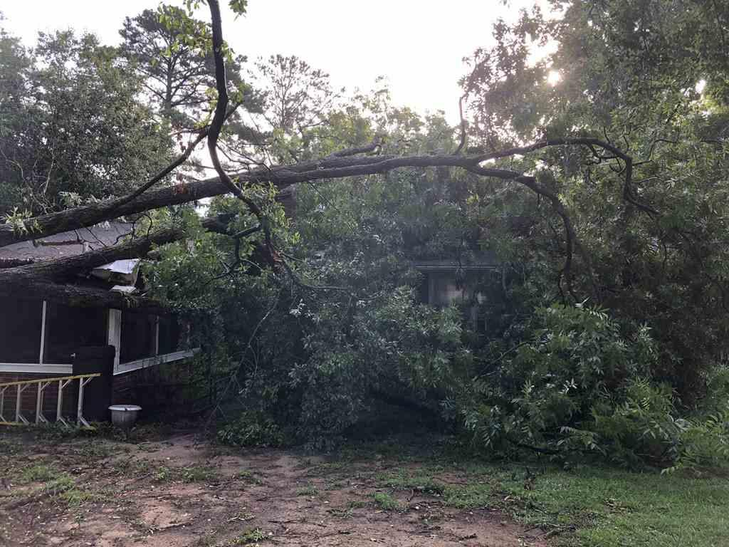 tree on house after storm