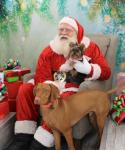 Soda City Santa Pets reduced