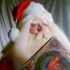 Santa Rowdy